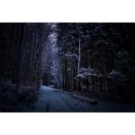 White Path. Leica M7. Kodak Portra.